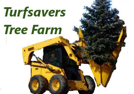 Turfsavers Tree Farm Moving
